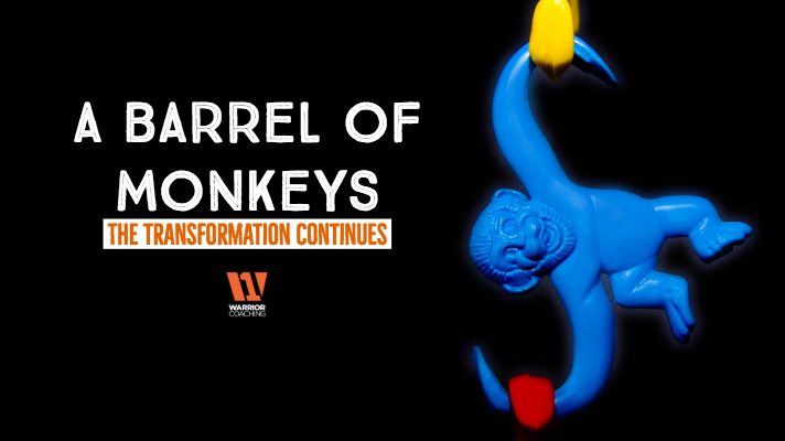 A Barrel of Monkeys; The Transformation Continues